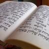 Летние языковые курсы: греческий идревнееврейский языки